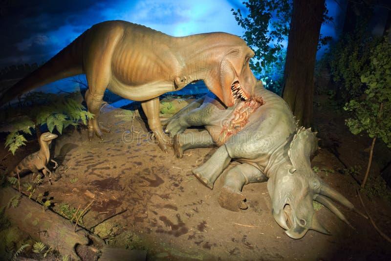 Allgemeines Museum T-Rex, Tyrannosaurus Rex Milwaukee stockfotos