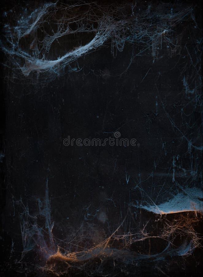Allhelgonaaftonbakgrund med spindelnätet royaltyfri foto
