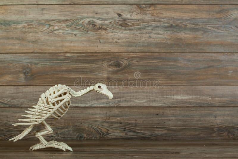 Allhelgonaaftongamskelett på wood bakgrund royaltyfri bild