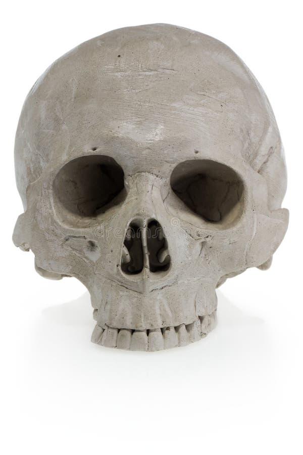 Allhelgonaaftonmänniskaskalle Läskigt skelett- huvud arkivbilder
