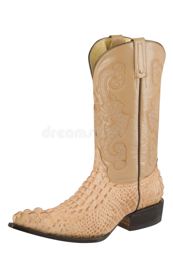 Free Alligator Boot Royalty Free Stock Photo - 6159305