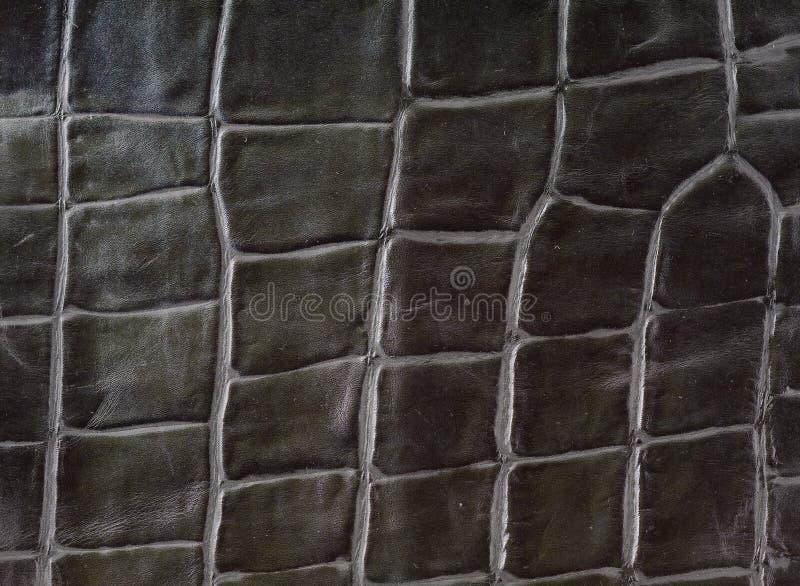 Download Alligator Leather Imitation Stock Photo - Image: 15153372