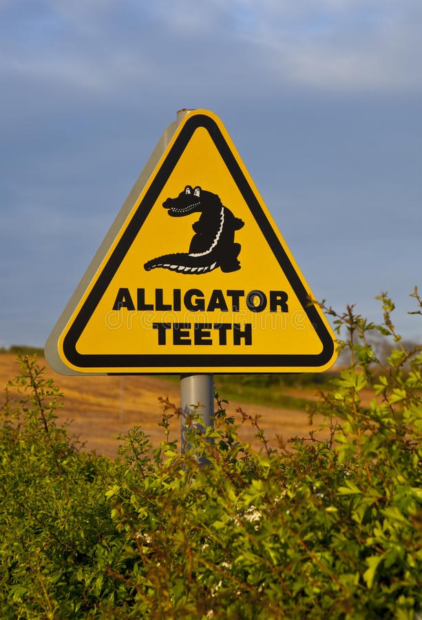 Free Alligator Sign Royalty Free Stock Photography - 9371717