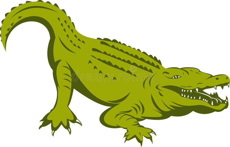 Alligator about to attack vector illustration