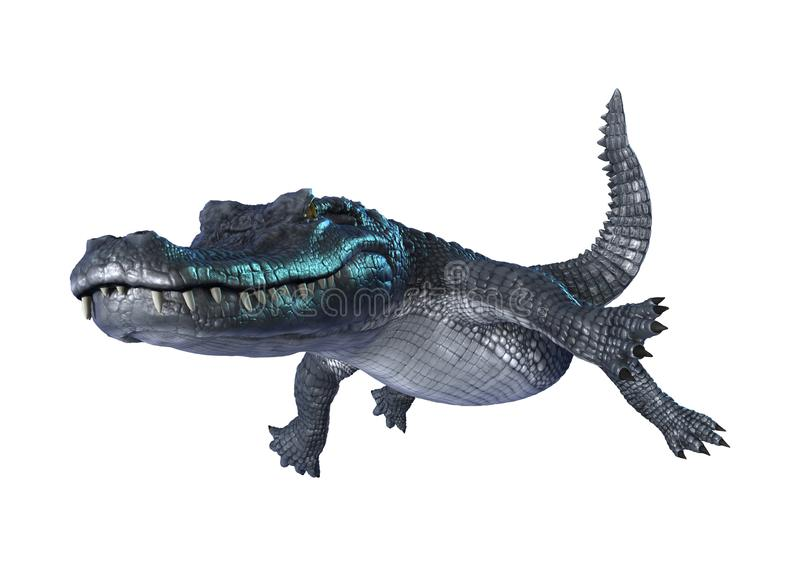 alligatorkajman för tolkning 3D på vit royaltyfri illustrationer