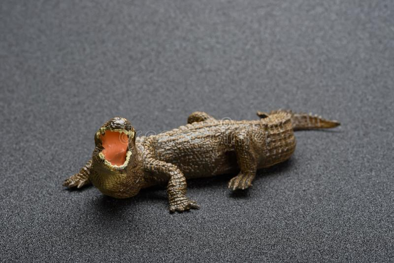Alligatorleksak på mörk bakgrund royaltyfri bild