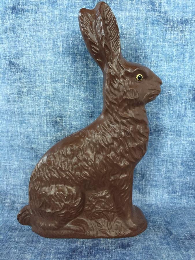 Allineamento del coniglietto immagini stock libere da diritti