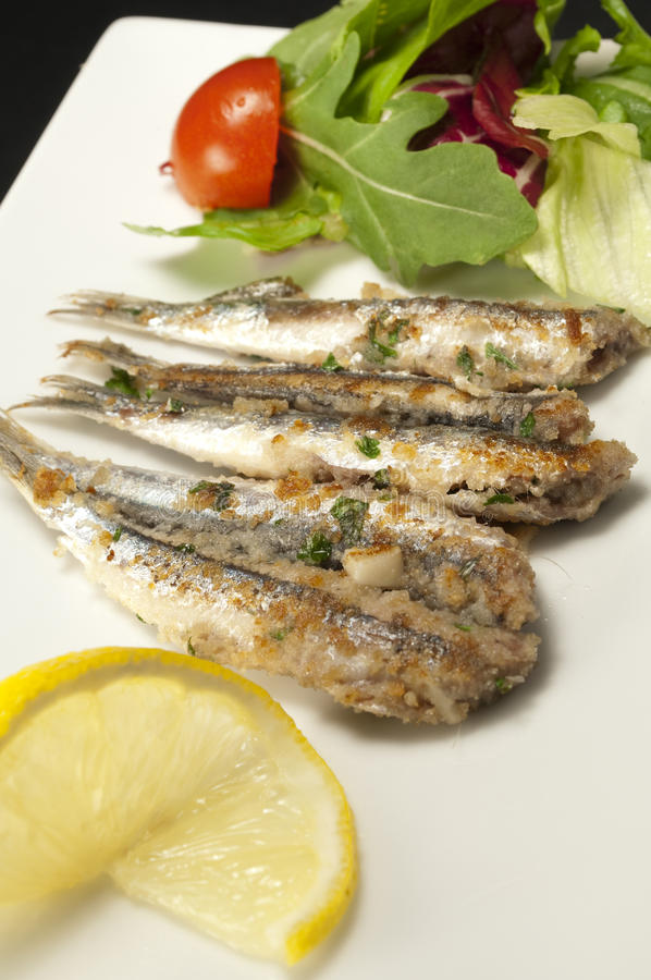 Allis shad composition. Allis shad with lemon and salad royalty free stock photo