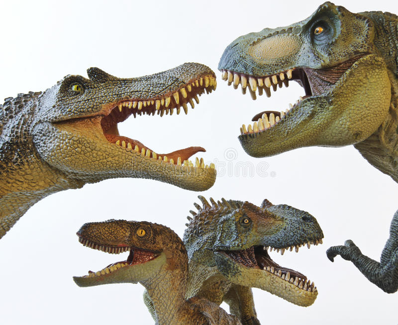 allosaur rex spinosaur t velociraptor obrazy stock