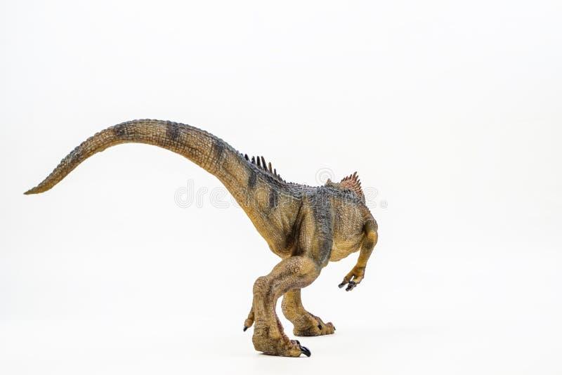 Allosaurus, δεινόσαυρος στο άσπρο υπόβαθρο στοκ εικόνα