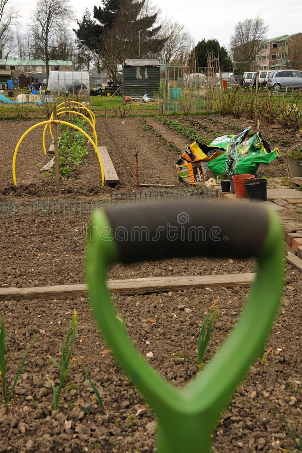 Allotment gardens. Selective focus of an allotment gardens showing sharp background with soft foreground spade handle royalty free stock images