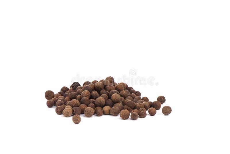 Allspice перца изолированный на белой предпосылке Ямайский болгарский перец стоковые изображения