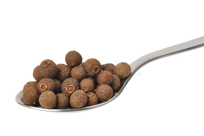 Download Allspice stock image. Image of spice, jamaica, teaspoon - 16750029