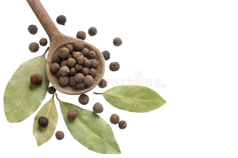 Allspice and bay leaves royalty free stock images