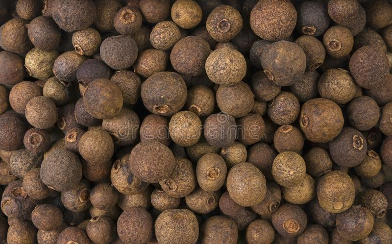 Allspice or Jamaican pepper background. Natural seasoning texture. Natural spices and food ingredients royalty free stock photo