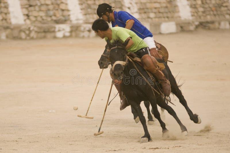 Allumette de polo photo libre de droits