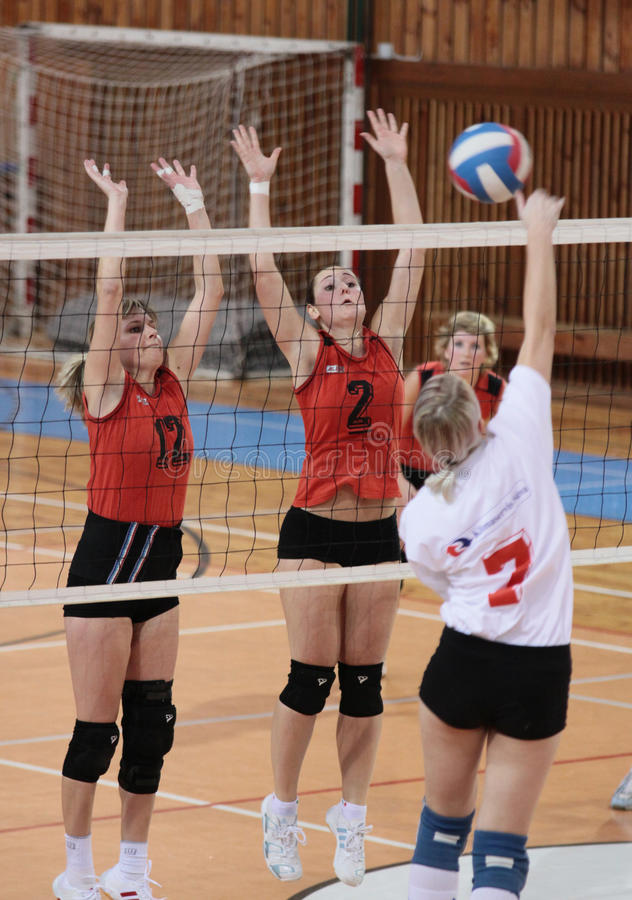 ALLUMETTE DE VOLLEYBALL photos stock