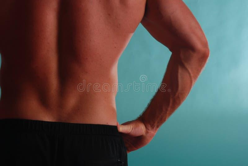Allungamento della parte posteriore maschio 3 del muscolo immagini stock libere da diritti