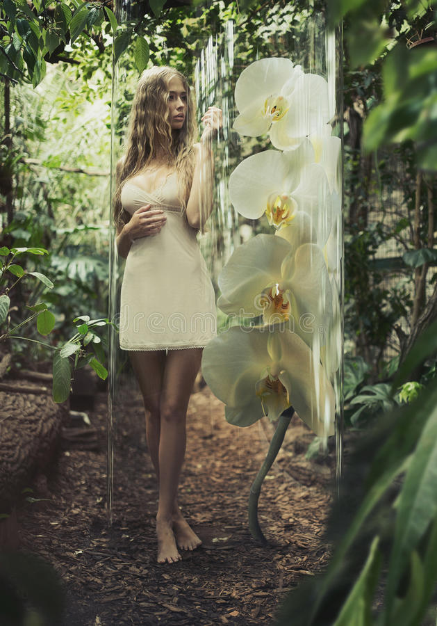Alluring blonde girl in glass cage royalty free stock photography