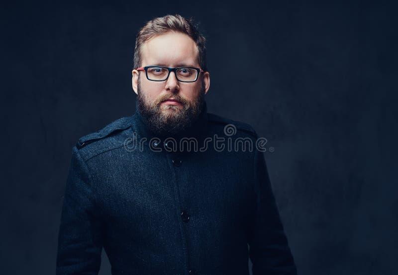 Allvarlig fyllig man i glasögon över grå bakgrund royaltyfria bilder