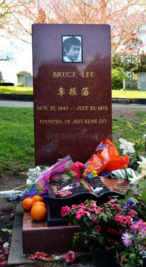 Allvarlig plats av Bruce Lee arkivbild