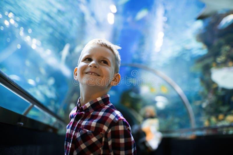 Allvarlig pojke som ser i akvarium med den tropiska fisken fotografering för bildbyråer