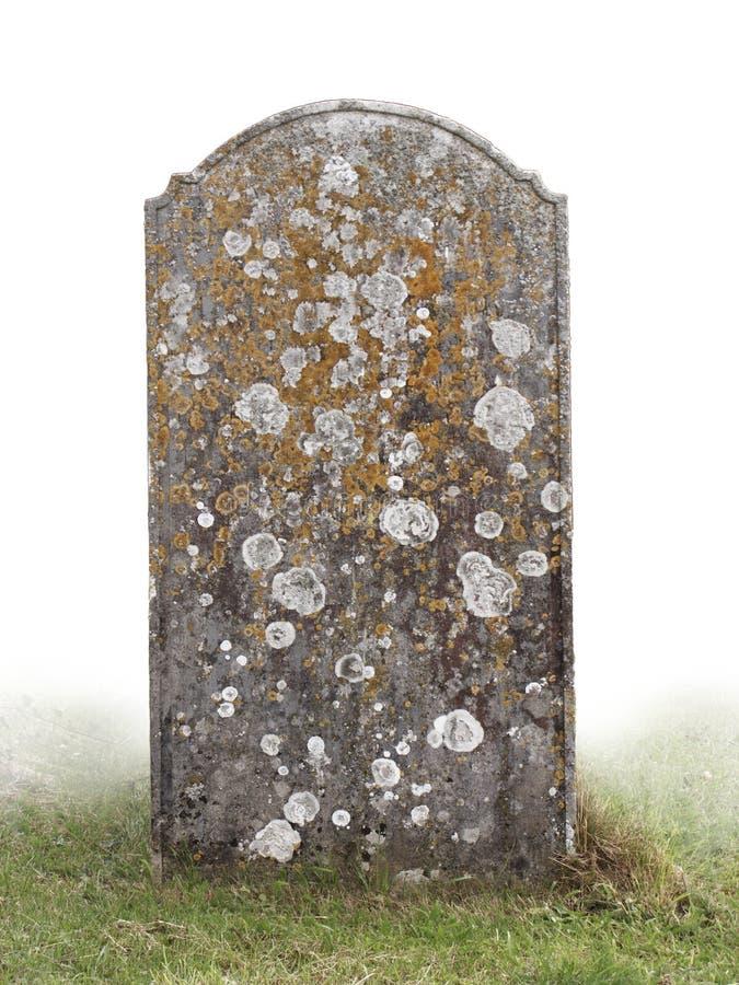 allvarligt single stenen arkivbild