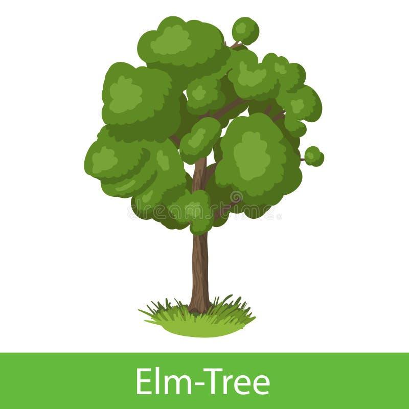 Alm-träd tecknad filmsymbol stock illustrationer