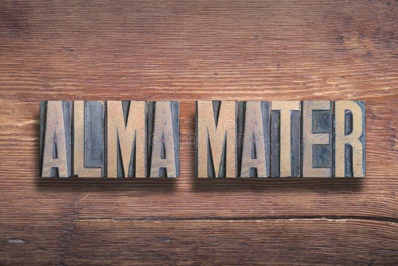 Alma mater drewno obrazy royalty free
