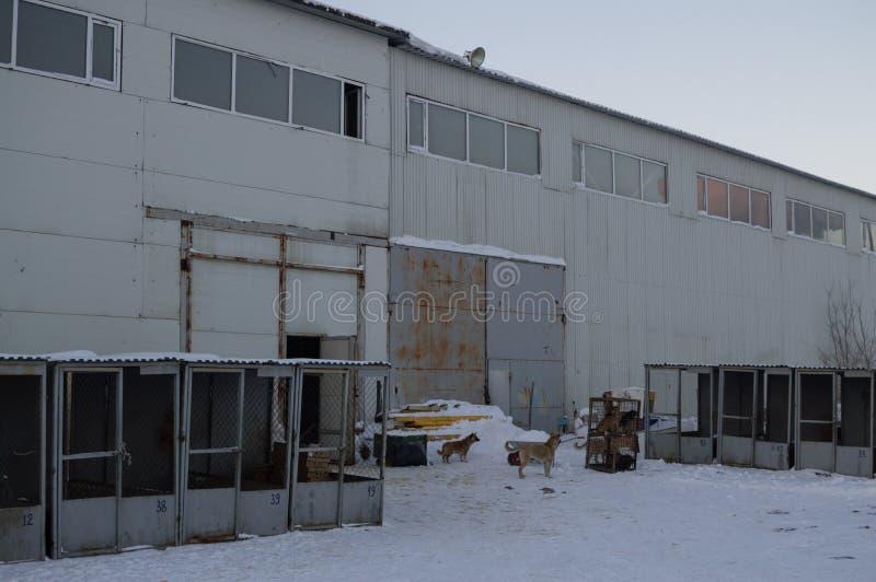 Almacén en Astana, Kazajistán imagenes de archivo