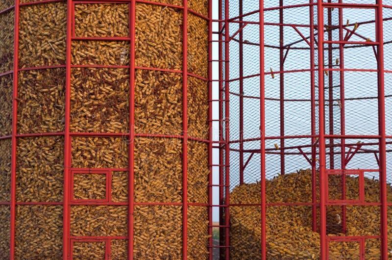 Almacenaje del maíz imagen de archivo