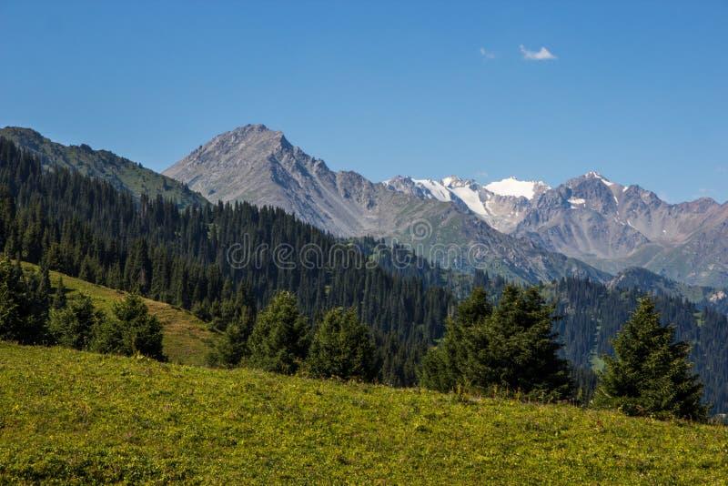 Almaty berglandskap Sommarsikt av Kok Zhailau arkivfoton