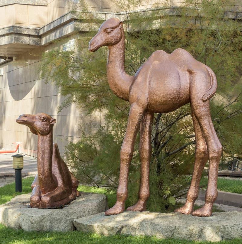 Almaty - rzeźba wielbłądy zdjęcia royalty free