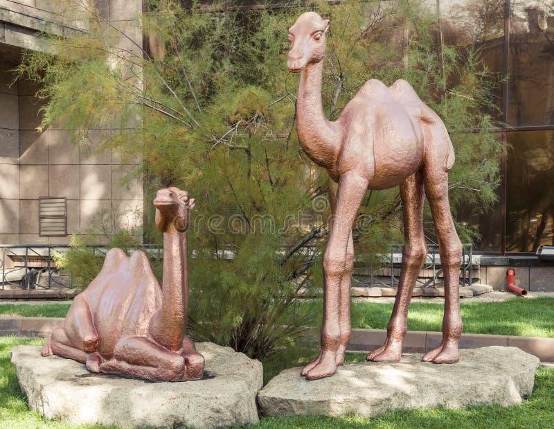 Almaty - rzeźba wielbłądy obraz royalty free