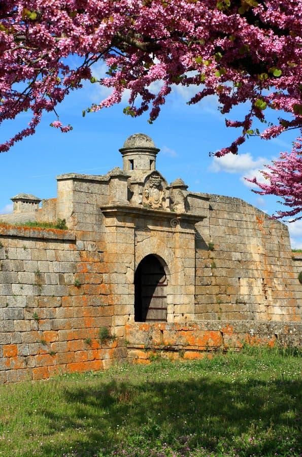 Almeida historisk by, Portugal royaltyfria foton