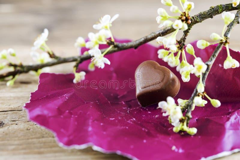 Almendra garapiñada del corazón del chocolate en el papel rosado y una rama f del flor imágenes de archivo libres de regalías