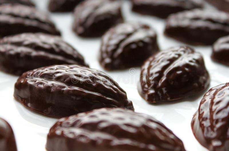 Almendras garapi?adas oscuras del chocolate foto de archivo libre de regalías