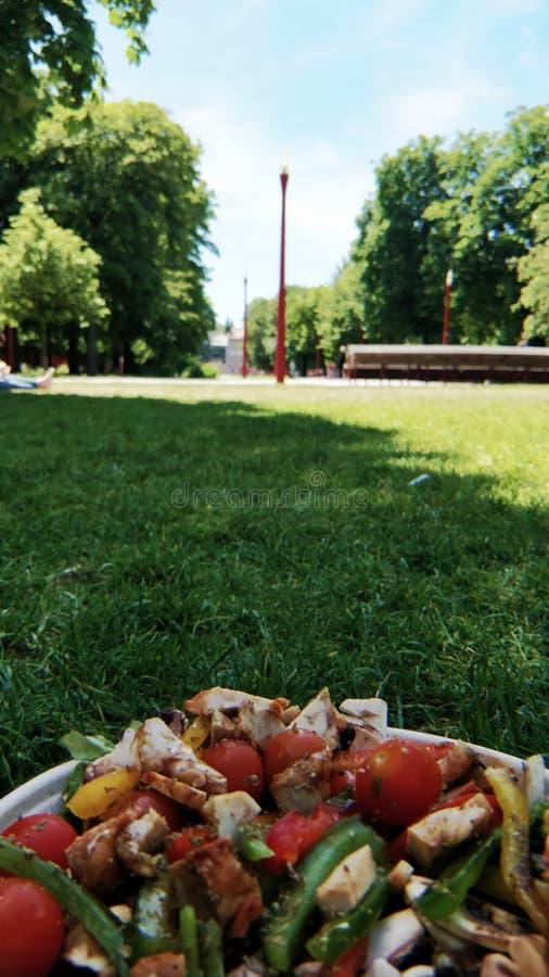 Almoço no parque imagem de stock royalty free
