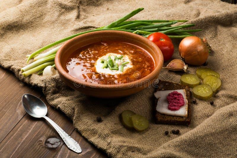 Almoço ucraniano: sopa, pepinos conservados, alho imagem de stock royalty free