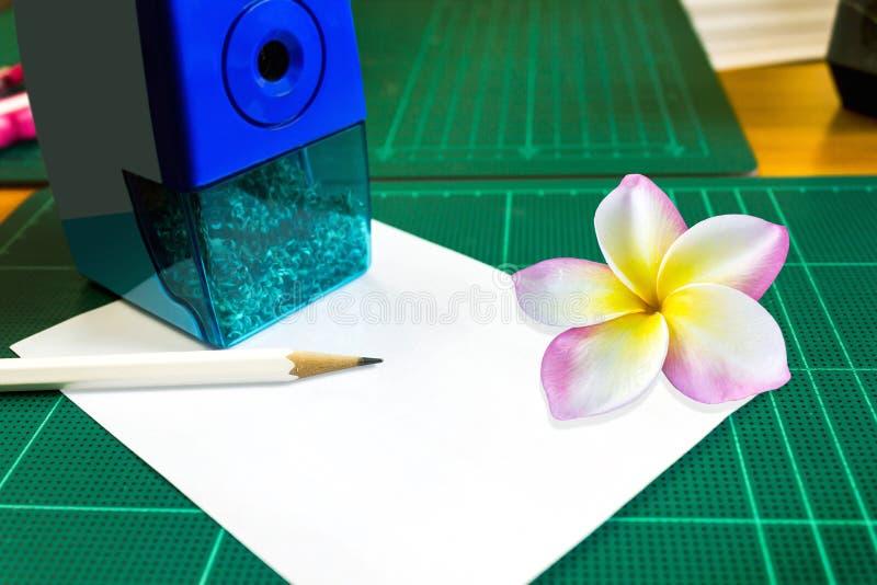 Almofada de nota vazia ou vazia do espaço ou almofada de memorando com plumeria ou frang fotografia de stock