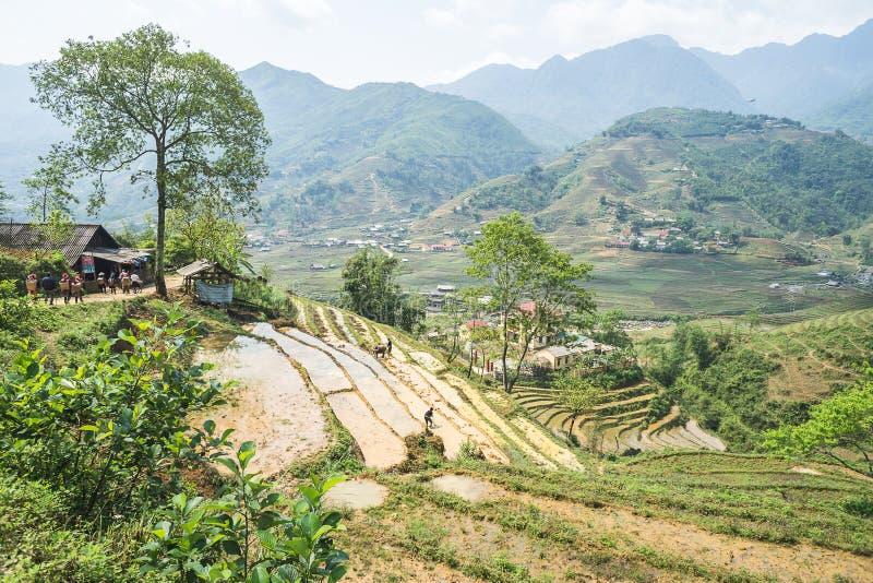 Almofadas de arroz de Sapa, Vietname imagens de stock royalty free