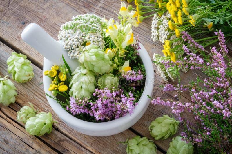 Almofariz das ervas medicinais, plantas saudáveis na tabela de madeira Vista superior O perforatum erval de Medicine foto de stock