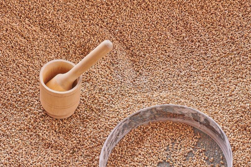 Almofariz de madeira, grões do trigo na peneira metálica Vista superior, textura das grões do trigo fotos de stock