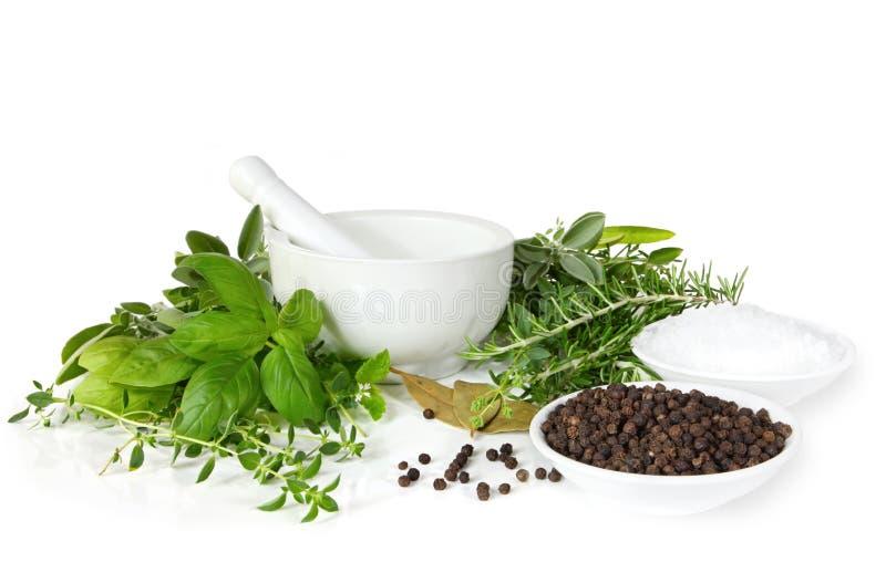 Almofariz e pilão com ervas e especiarias foto de stock royalty free