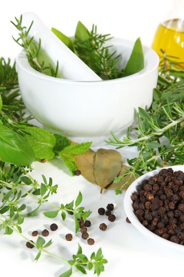 Almofariz e pilão com ervas frescas imagens de stock royalty free