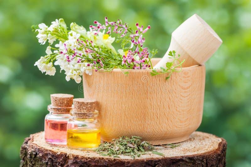 Almofariz rústico com ervas e garrafas com óleo essencial imagens de stock royalty free