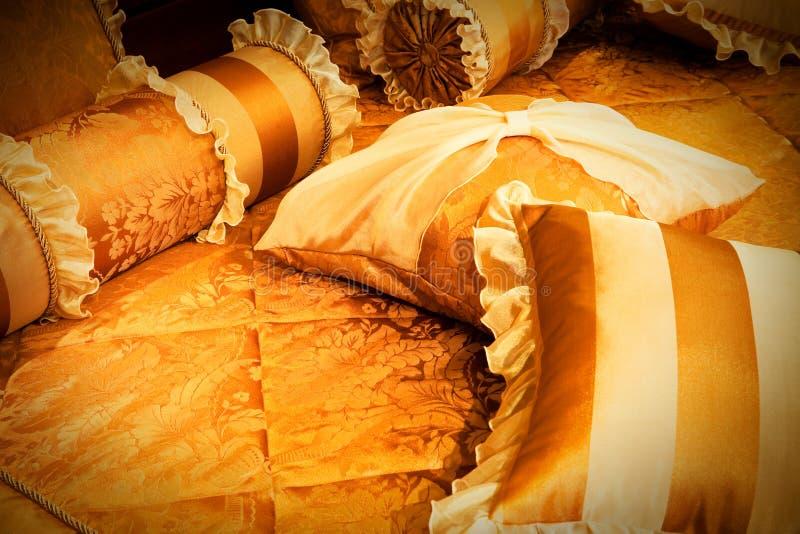 Almohadillas anaranjadas hermosas fotos de archivo libres de regalías