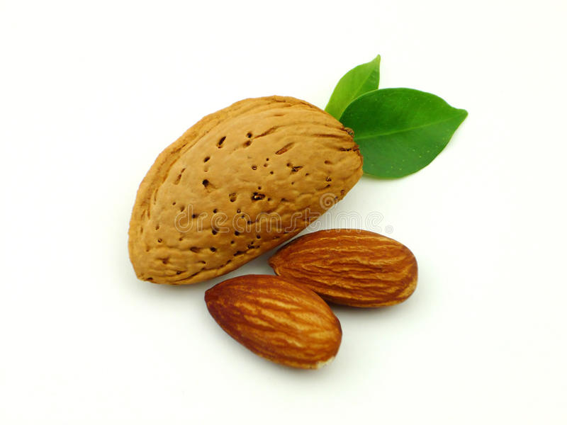 Download Almond Stock Photography - Image: 12077112
