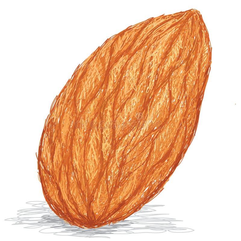 Download Almond stock illustration. Illustration of protein, salted - 27312412