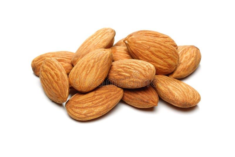 Almond Groups royalty free stock photos